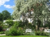 Rosengarten_11